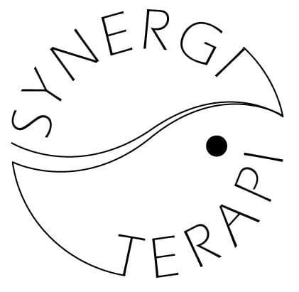Synergiterapi